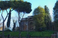 一个有趣和非常老房子在树后掩藏 罗马 意大利 免版税库存照片