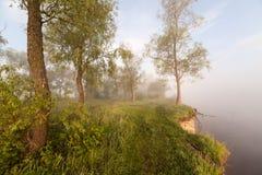 一个有雾的Mountain湖的春天海岸线日出的 库存图片