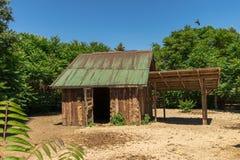 一个木房子在密林 库存照片