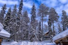 一个木房子在积雪的森林里在拉普兰地区 免版税库存照片