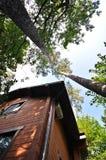 一个木房子的门面天空背景的  库存照片