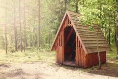 一个木树荫处在森林里 库存图片