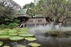 一个木棕色泰国房子的风景视图有一个绿色屋顶的在有雾的一个荷花池附近 免版税库存照片