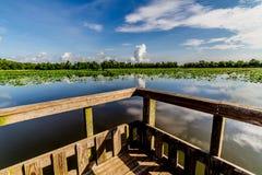 一个木渔船坞的有趣的透视在一个夏日的。 图库摄影