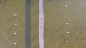 一个木码头的鸟瞰图有附属的小船的 股票录像