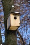 一个木鸟舍 免版税库存照片