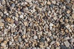 从一个杂色的海小卵石的结构 库存照片
