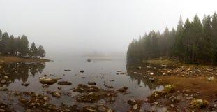 一个杉木森林包围的湖的边缘在一有雾的天,字体罗梅乌 免版税库存图片