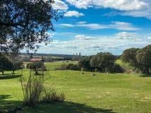 一个村庄和圣栎风景在牧场地有蓝天和云彩的春天在西班牙 图库摄影