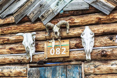 一个村庄在新疆 库存图片