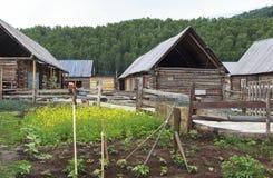 一个村庄在新疆 免版税库存照片