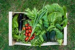 一个条板箱菜,包含茄子,蕃茄,黄瓜,从上面被看见的沙拉 科里亚诺,伊米莉亚罗马甘,意大利 库存照片