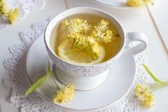 一个杯子与菩提树的清凉茶开花 免版税库存图片