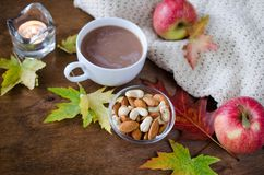 一个杯子与被编织的毯子、坚果、苹果和秋叶的热的可可粉 感恩天概念 库存图片