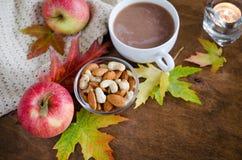 一个杯子与被编织的毯子、坚果、苹果和秋叶的热的可可粉 感恩天概念 免版税库存照片