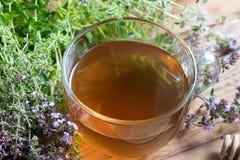 一个杯子在一张木桌上的爬行的百里香茶 免版税库存图片