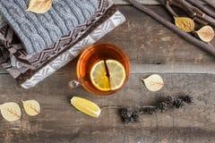 一个杯子在一条毯子的热的红茶在桌上 免版税图库摄影