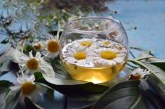 一个杯子在木背景的甘菊茶 免版税库存图片