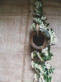 一个杯子无奶咖啡和花小树枝  免版税库存图片