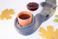 一个杯子热的茶用在白色背景的一条围巾包裹的山莓果酱 库存图片
