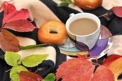 一个杯子牛奶茶、甜新鲜的小圆面包和五颜六色的秋叶在一条镶边温暖的野餐毯子 库存图片
