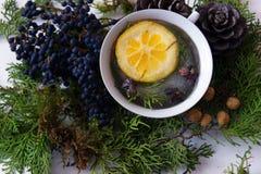 一个杯子用在针叶树分支的柠檬 免版税库存照片