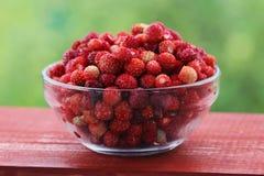 一个杯子用成熟草莓 免版税库存照片