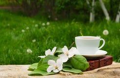 一个杯子红茶、书和一棵开花的苹果树的分支 库存图片