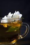 一个杯子茉莉花茶 免版税图库摄影