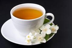 一个杯子茉莉花茶 免版税库存照片