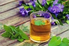 一个杯子蜜蜂花清凉茶 免版税库存照片