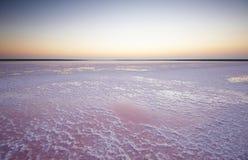 一个桃红色湖的盐和盐水,上色被微藻类Dunaliella盐沼在日落 免版税库存图片