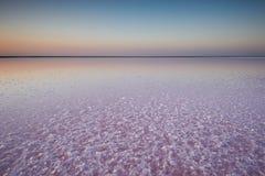 一个桃红色湖的盐和盐水,上色被微藻类Dunaliella盐沼在日落 免版税库存照片