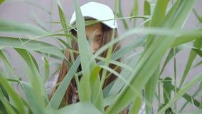 一个棒球帽的一个少妇,当长的头发站立在高芦苇中间 影视素材