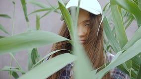 一个棒球帽的一个少妇,当长的头发站立在高芦苇中间 股票视频