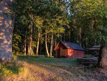 一个棚子在森林里 库存图片