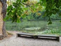 一个森林湖的全景从一条长凳的在岸 免版税图库摄影