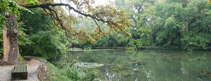 一个森林湖的全景从一条长凳的在岸 免版税库存照片