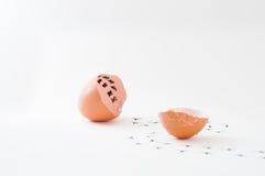 一个残破的蛋壳和鸡脚印在地板上与计数几天 免版税库存照片