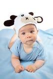 一个母牛帽子的婴孩在蓝色毯子 库存图片
