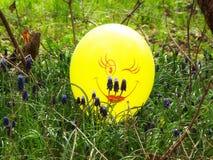 一个气球 库存照片