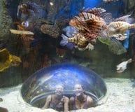 一个水下的世界的女孩 免版税库存图片