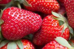 一个水多的成熟草莓的宏观图片 免版税库存照片