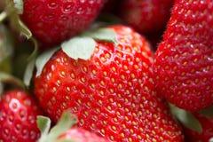 一个水多的成熟草莓的宏观图片 免版税图库摄影