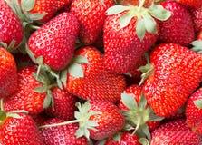 一个水多的成熟草莓的宏观图片 免版税库存图片