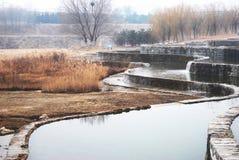 一个水池在庭院里 图库摄影