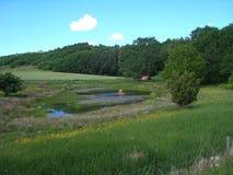 一个池塘在丹麦乡下 库存图片