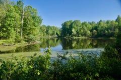 一个池塘在森伯里附近的中央俄亥俄 库存照片
