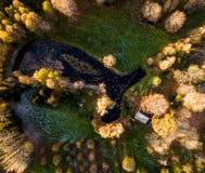 一个池塘的寄生虫摄影在议院后的包围与Bea 图库摄影