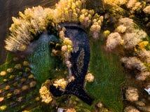 一个池塘的寄生虫摄影在议院后的包围与Bea 库存图片
